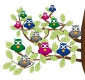 Rolig flock av färgrika fåglar stock illustrationer