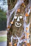 Rolig framsida på ett nedgångträd arkivfoton