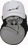 Rolig gorilla i en baseballmössa Arkivbild