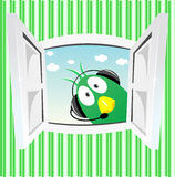 Rolig grön fågel som ser in i öppet fönster Arkivfoto