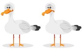 Rolig gullig Seagull Arkivfoton
