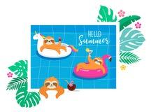 Rolig illustration för sommar med gulliga tecken av koalor och sengångare och att ha gyckel Pöl-, havs- och strandsommaraktivitet vektor illustrationer