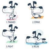 Rolig instruktörhundkapplöpning Fotografering för Bildbyråer