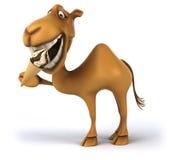 Rolig kamel royaltyfri illustrationer