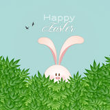 Rolig kanin för lycklig påsk Arkivbilder