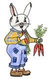 Rolig kanin med morötter Royaltyfri Foto