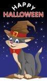 Rolig katt i en halloween hatt lyckliga halloween Arkivbild