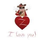 Rolig katt Zorro Valentine Royaltyfri Fotografi