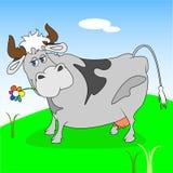 Rolig ko stock illustrationer