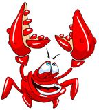 rolig krabba Royaltyfri Bild