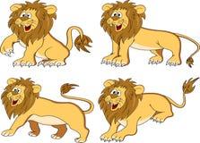 rolig lion för samling Royaltyfria Foton