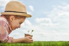 Rolig liten trädgårdsmästare Arkivbilder
