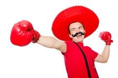 Rolig mexikan med boxarehandskar royaltyfri foto