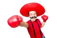 Rolig mexikan med boxarehandskar arkivbilder