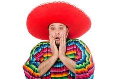 Rolig mexikan som isoleras på vit royaltyfria bilder
