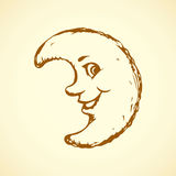 rolig moon bakgrund som tecknar den blom- gräsvektorn Royaltyfri Fotografi