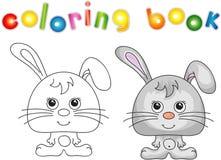 Rolig och gullig hare (kanin) Arkivbild