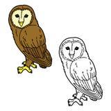rolig owl stock illustrationer