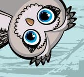 Rolig owl för tecknad film Arkivfoton