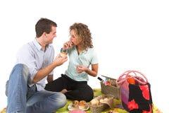 rolig picknick Royaltyfria Bilder