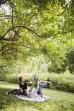 Rolig picknick för familj Royaltyfria Bilder