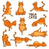 Rolig röd katt som gör yogaposition royaltyfri illustrationer
