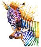 Rolig sebraillustration med färgstänkvattenfärgtextur regnbågebakgrund f stock illustrationer