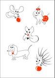 rolig set för djur Arkivbild