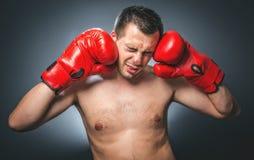 Rolig slagen boxare Arkivfoton