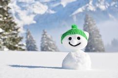 Rolig snowman royaltyfri foto