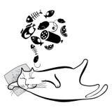 Rolig sova katt Serie av komiska katter Fotografering för Bildbyråer