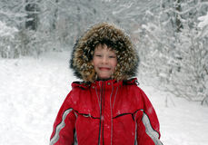rolig vinter Arkivbilder