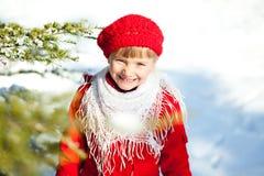 rolig vinter Arkivfoto