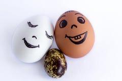 Roliga ägg som imiterar en le blandad familj med versicolored lodisar Arkivbild