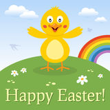 Roliga Chick Happy Easter Card Arkivfoto