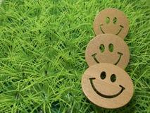 Roliga emoticons från rengöringsduken på en grön gräsmatta, internetberoende Arkivbild