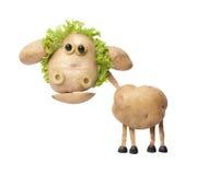 Roliga får som göras av potatisar och sallad arkivbild