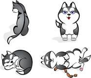 Roliga Huskies Vektor Illustrationer