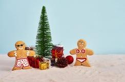 Roliga julkakor i baddräkt med julgranen och gåvan royaltyfri foto