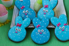 Roliga kaniner för påsk, hemlagade målade pepparkakor royaltyfria bilder