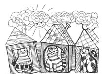 Roliga katter Arkivbild