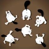 roliga katter stock illustrationer