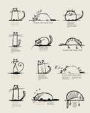 Roliga katter skissar, planlägger med stället för din text Arkivbilder