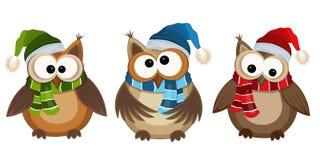 roliga owls Fotografering för Bildbyråer