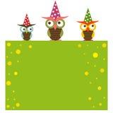 roliga owls för bakgrund Fotografering för Bildbyråer