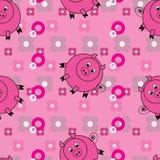 roliga pigs för bakgrund Royaltyfri Bild