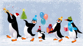 Roliga pingvin Royaltyfri Fotografi