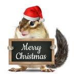 Roliga Santa Claus, jordekorrehållsvart tavla med glad jul royaltyfria foton