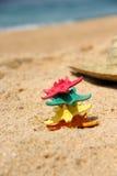 Roliga sjöstjärnor på stranden Arkivfoto