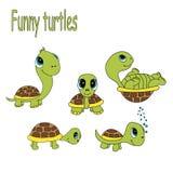 roliga sköldpaddor Royaltyfri Fotografi